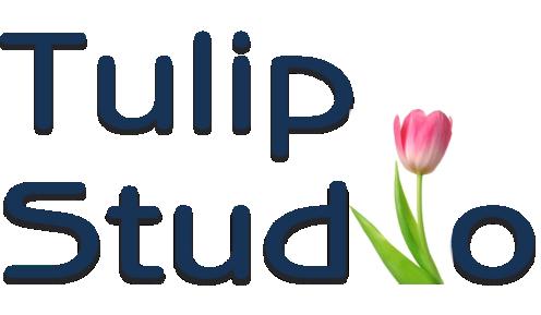 Tulip Studio 2021.10